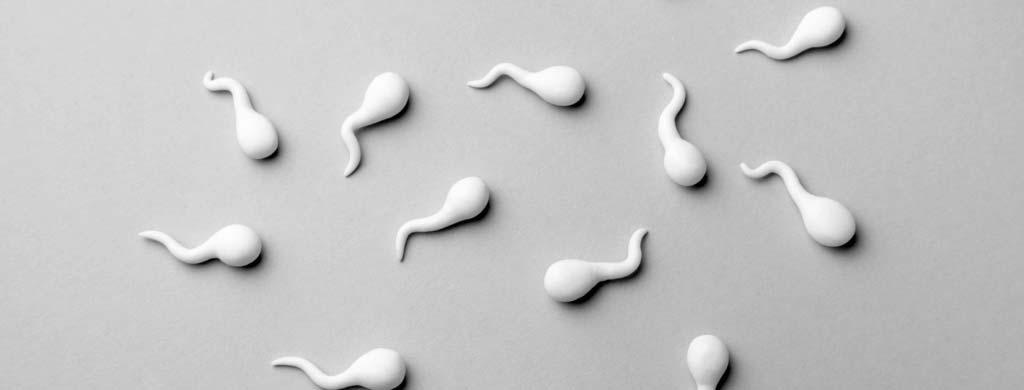 What vitamins make you ejaculate more