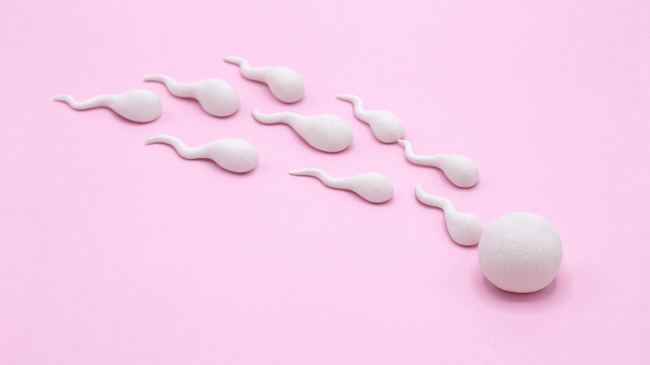 How long can sperm live inside a condom