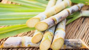 Top Sugarcane Juice Benefits You Didn't Know About